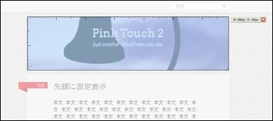 pinktouch13