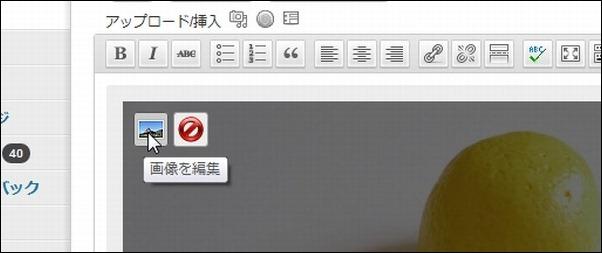 wordpressimage01