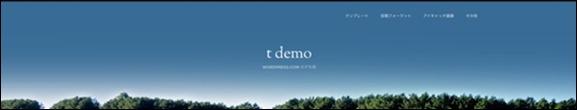 t demo-6