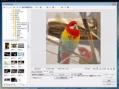 [PhotoScape] 画像の一部を指定された縦横比・大きさで切り取る(トリミングする)方法 | comemo