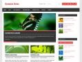 Dynamic News Theme — WordPress Themes for Blogs at WordPress.com