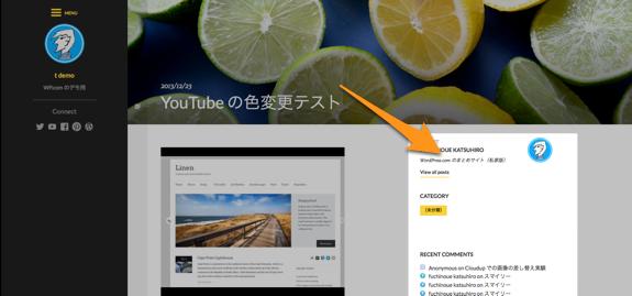 YouTube の色変更テスト   t demo