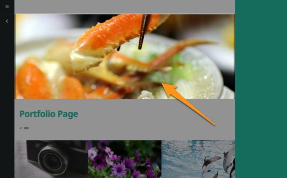 Portfolio Page | t demo