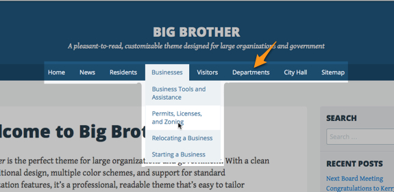 Big Brother   A pleasant-to-read, customizable theme designed for large organizations and government