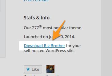 Big Brother Theme — WordPress Themes for Blogs at WordPress.com-1