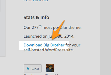 Big Brother Theme — WordPress Themes for Blogs at WordPress.com-1