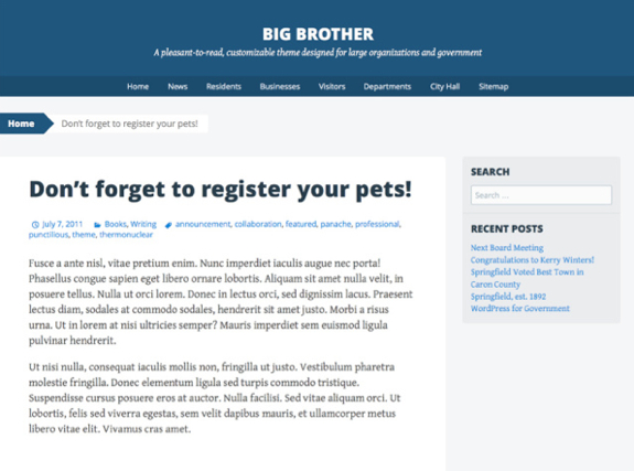 Big Brother Theme — WordPress Themes for Blogs at WordPress.com