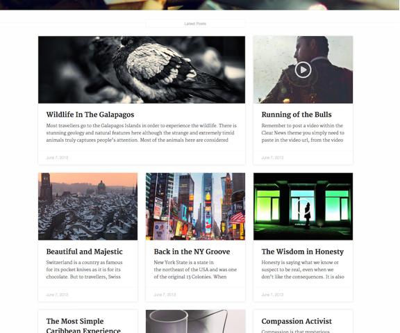 Clear News A topnsfsfsdotch WordPress.com site.jpg-1