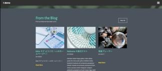 ポート のカスタマイズ — WordPress-3