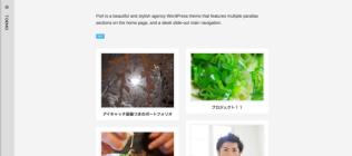 Designer のカスタマイズ — WordPress-10