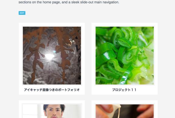 Designer のカスタマイズ — WordPress-5