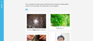Designer のカスタマイズ — WordPress-9