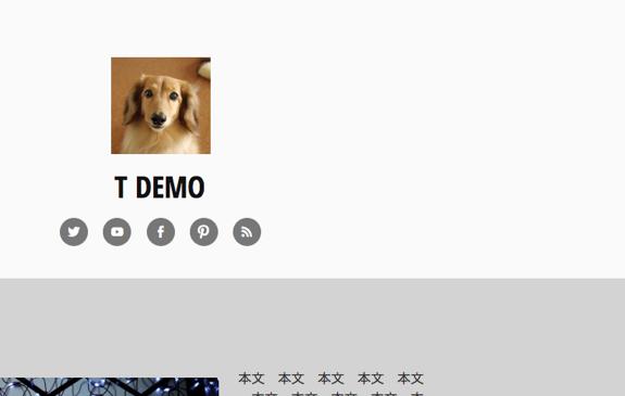 てすてす | t demo