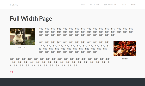 Full Width Page   t demo