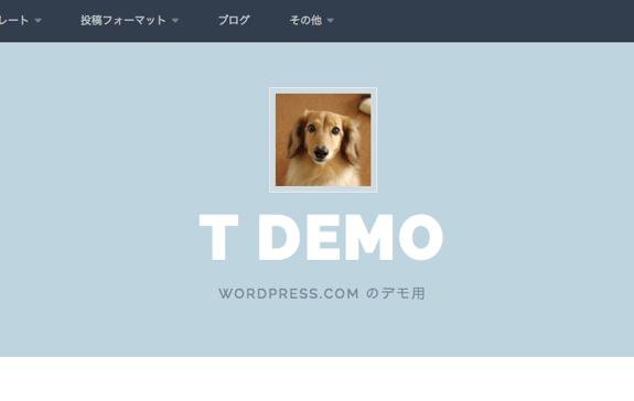 Plane のカスタマイズ — WordPress-1