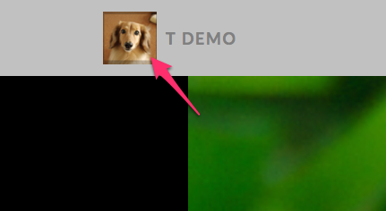 t demo   WordPress.com のデモ用-2