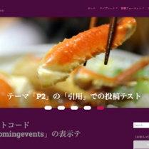 Customizer ‹ t demo — WordPress.com-2