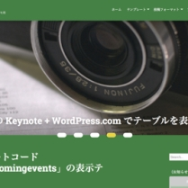 Customizer ‹ t demo — WordPress.com-3