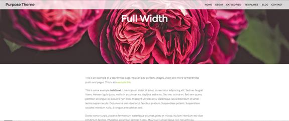Full Width | Purpose Theme