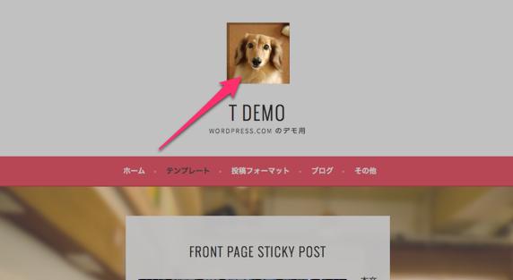 Customizer ‹ t demo — WordPress.com-1