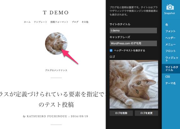 Customizer ‹ t demo — WordPress.com-27