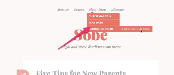 Sobe | A light and sweet WordPress.com theme-1