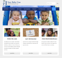 Any Baby Can | Empowering Families So Children Can Succeed