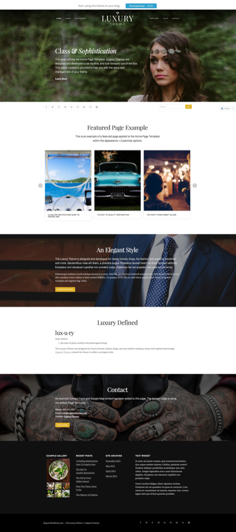 Luxury – A WordPress theme for luxury brands, fashion blogs and classy websites..png